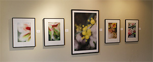 Emergence Gallery Show